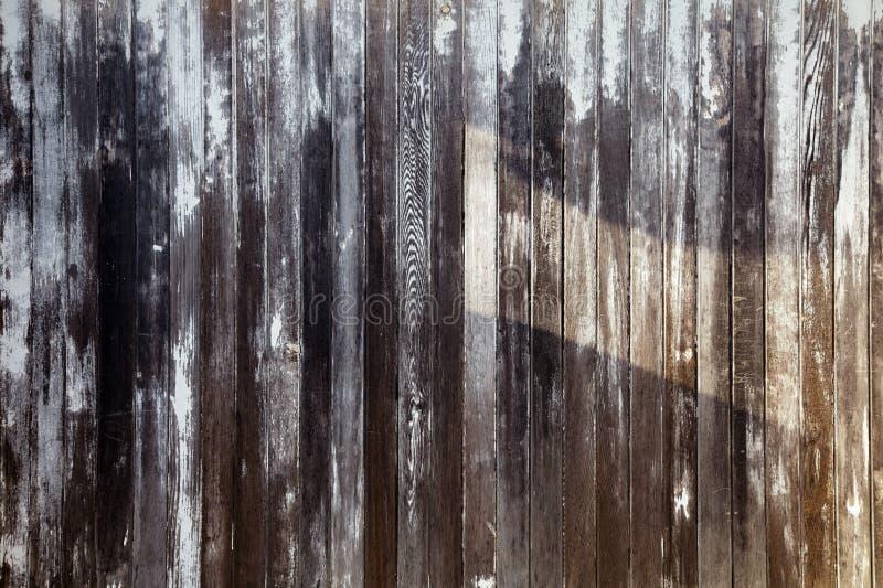 Åldrigt målat trästaket som ridas ut naturligt royaltyfri bild