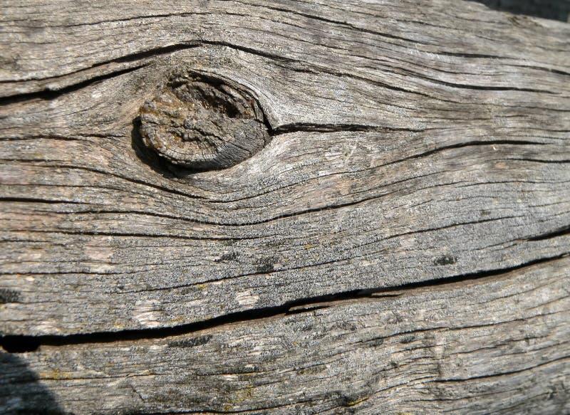 Download åldrigt trä fotografering för bildbyråer. Bild av close - 994205