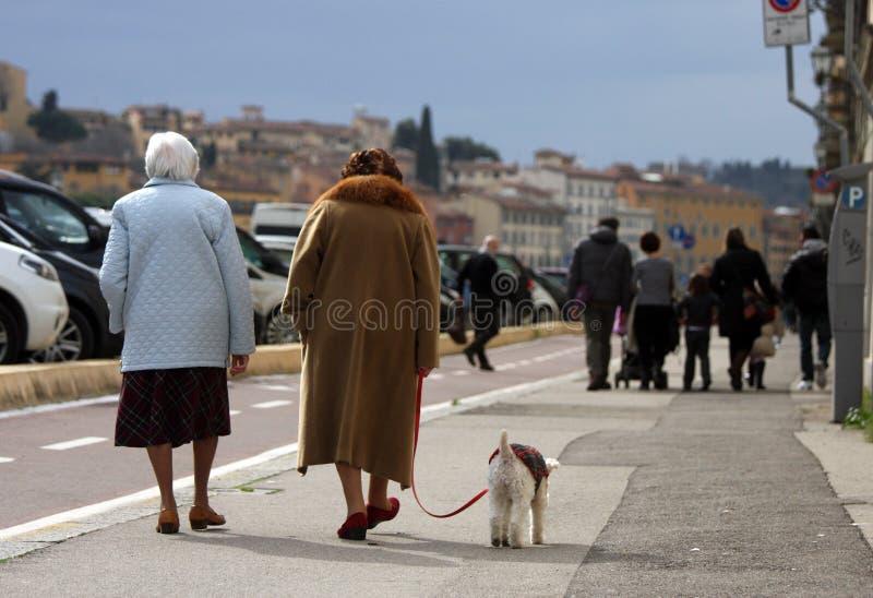 Åldring med hunden och familjer med barn royaltyfri foto