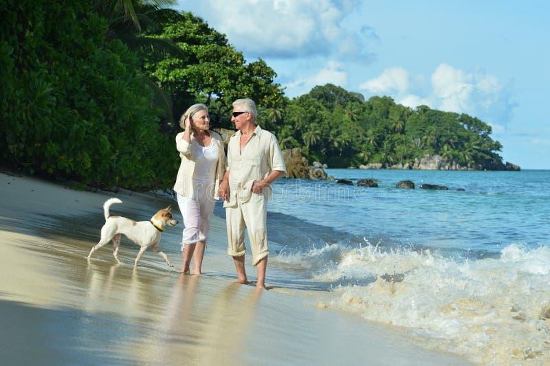 Åldringpar vilar på den tropiska stranden arkivfoton