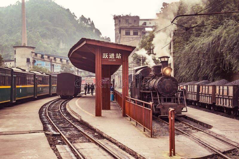 Ånga smal-måttet lokomotivet, och passagerarevagnar står vid plattformarna royaltyfria foton