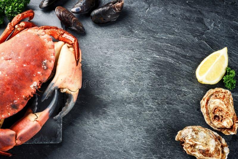 Ångad krabba och nya ostron på mörk bakgrund Dinn för havsmat royaltyfri bild