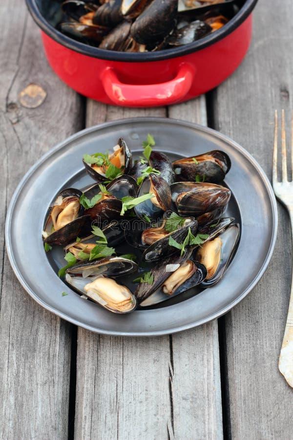 ångade musslor royaltyfri bild