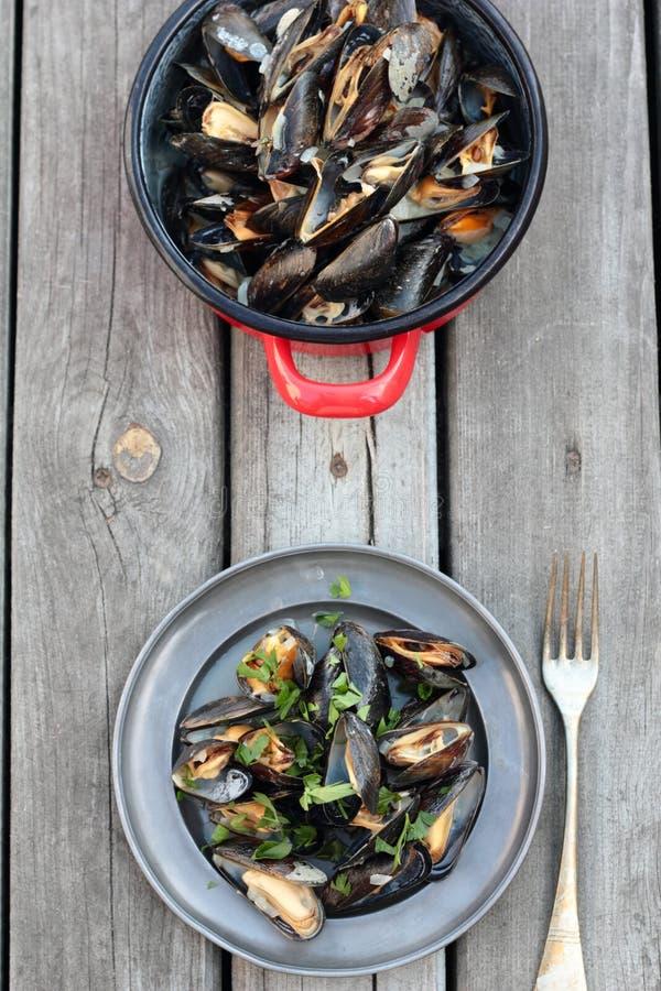 ångade musslor arkivfoto