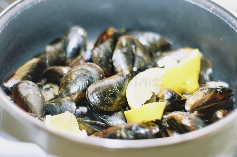 Ångade musslor i en klassisk kruka med några stycken av citronen arkivbilder