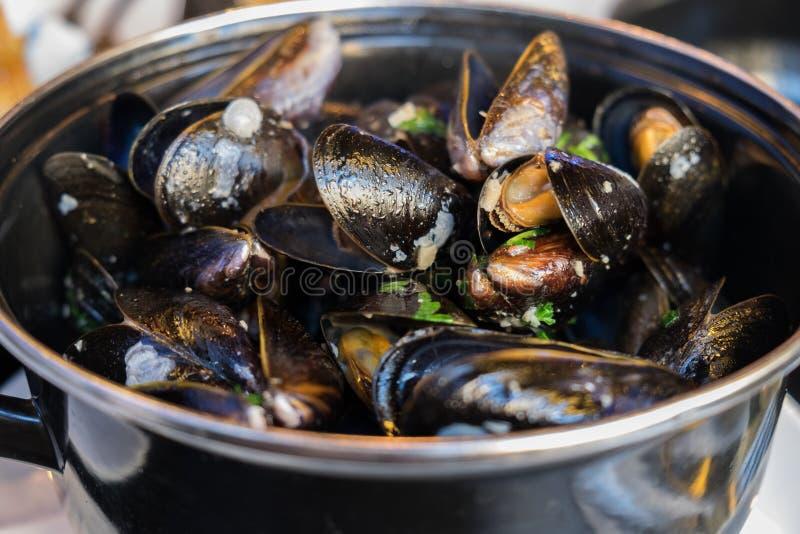 Ångade musslor i sås för vitt vin och smör royaltyfri bild
