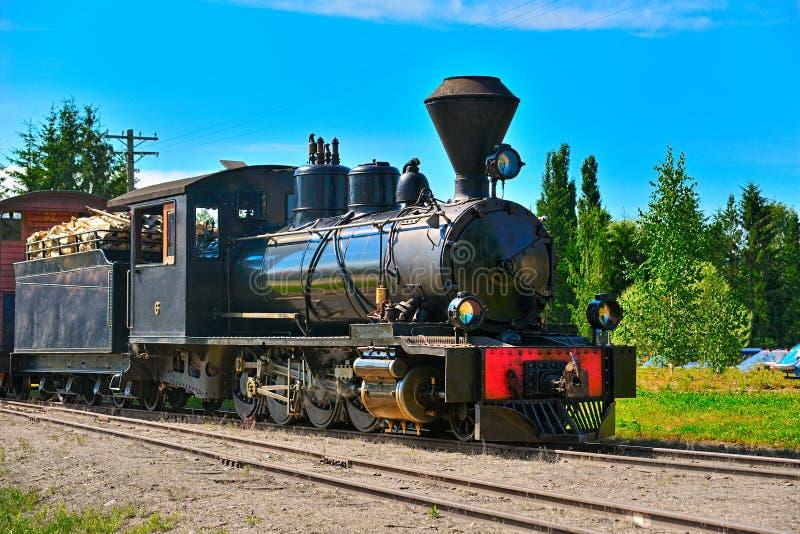 Ångalokomotiv för smal gauge. royaltyfria bilder