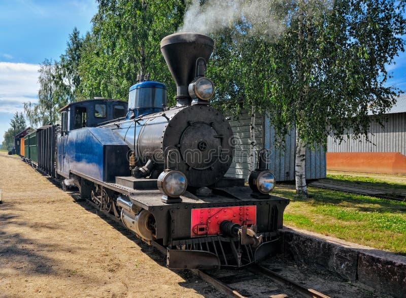Ångalokomotiv för smal gauge. royaltyfri fotografi
