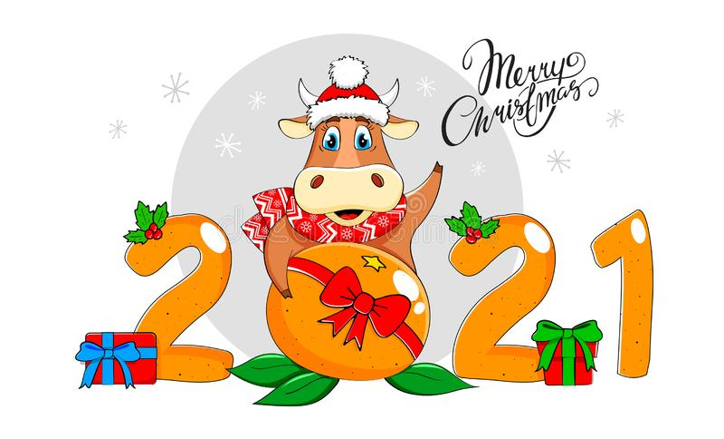 År för tjur 2021 Ljuny Bull i en scarf och hatt med tangerin Ett nytt år och ett nytt julomdöme vektor illustrationer