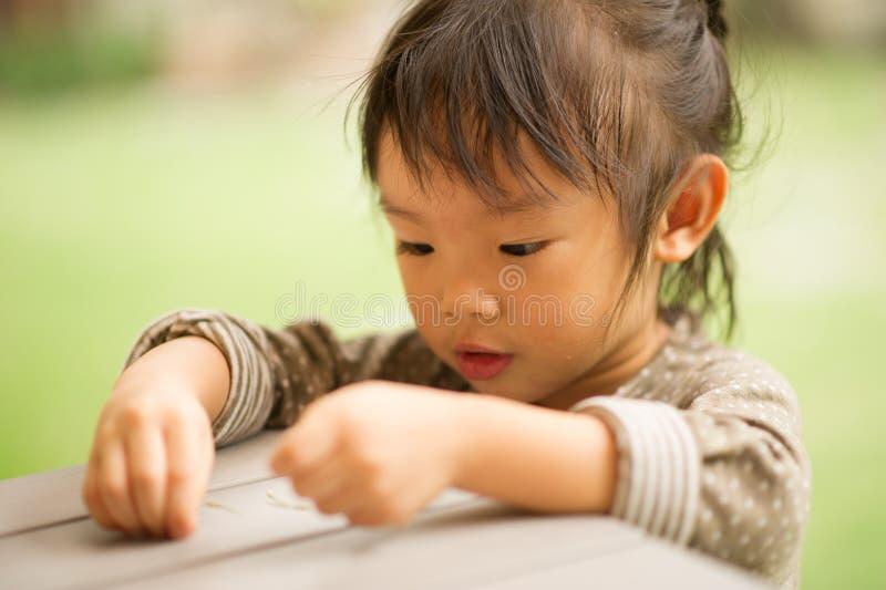årig kinesisk asiatisk flicka 5 i trädgårds- spela royaltyfria bilder