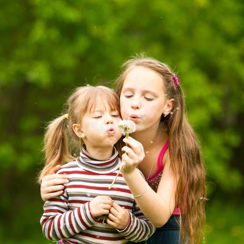 5 åriga och 11 åriga flickor som blåser maskrosen arkivfoton