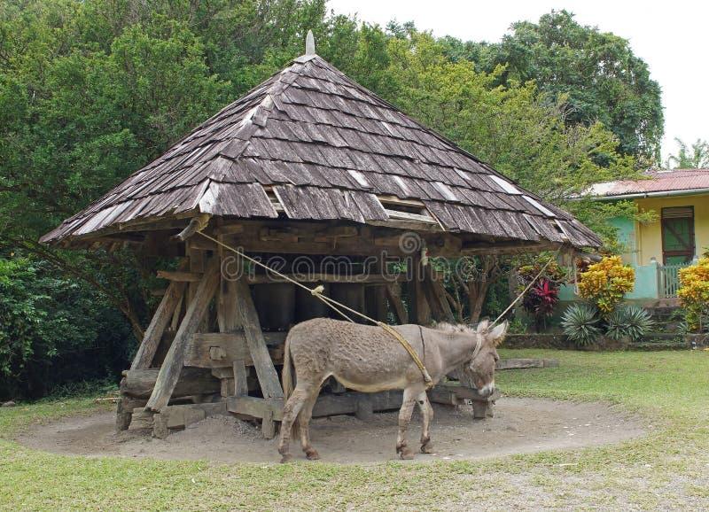 Åsna Cane Mill, St Lucia royaltyfria bilder