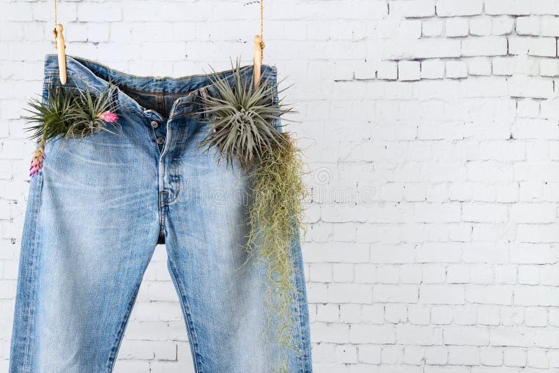 Återanvänd ditt mellersta ben för grov bomullstvilljeansbegreppet med kopieringsutrymme arkivbild