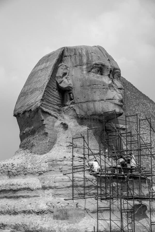 Återställande av den stora sfinxen av Giza i Egypten arkivfoto