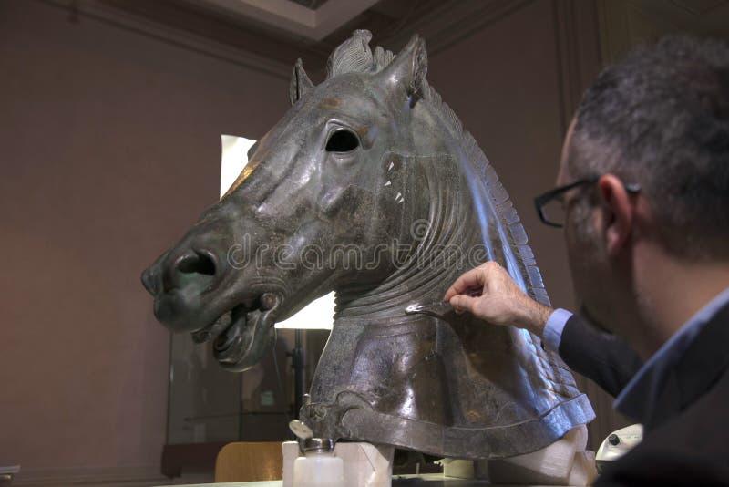 Återställande av hästen arkivfoton