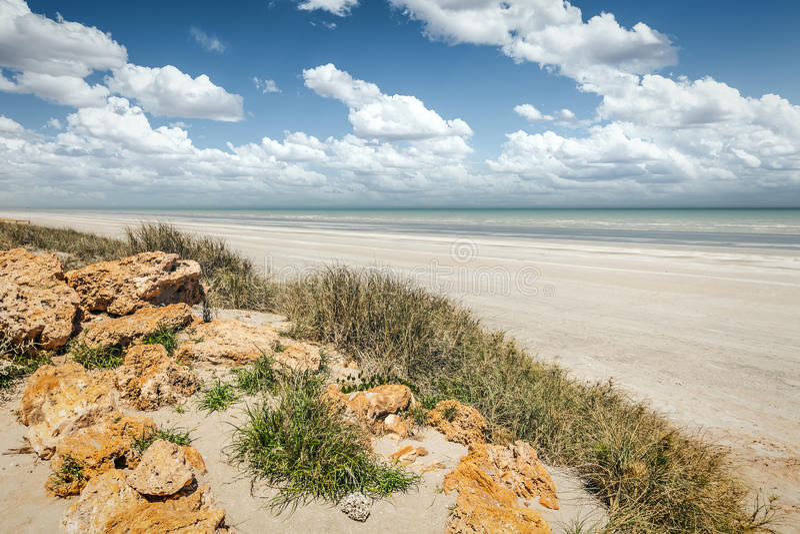 Åttio mil strand Australien royaltyfri fotografi