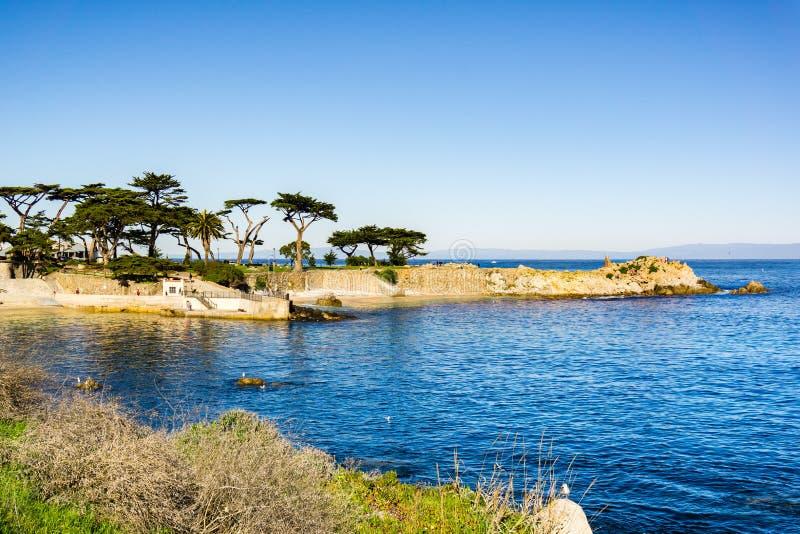 恋人在一个晴朗和清楚的冬日,太平洋丛林,蒙特里海湾区域,加利福尼亚指向 免版税库存照片
