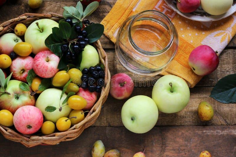 村庄庭院莓果和果子:苹果,李子,花揪,顶视图 库存照片