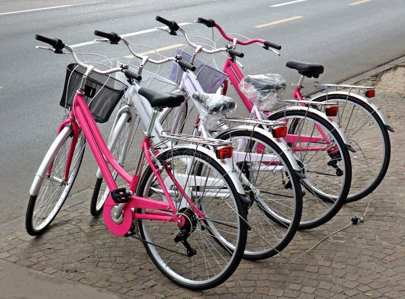 桃红色和白色全新的妇女自行车在边路排队了,在路旁 免版税库存图片