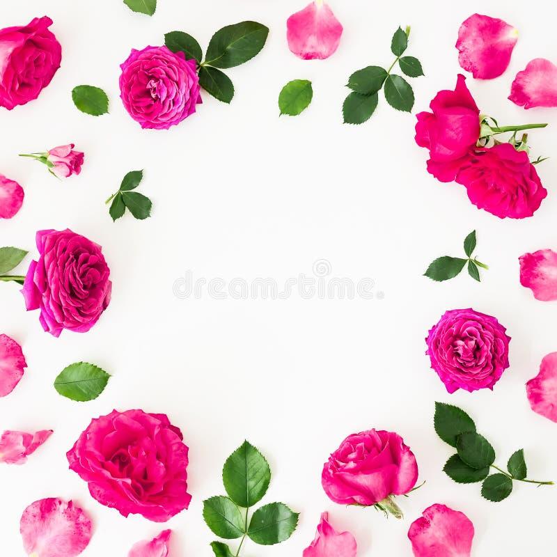 桃红色毛茛属花、玫瑰和叶子圆的框架在白色背景 花卉生活方式构成 平的位置,顶视图 免版税库存照片