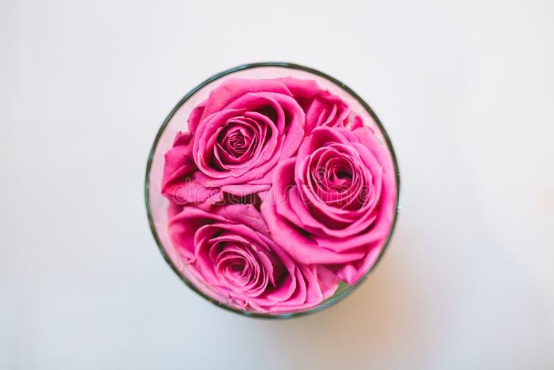 桃红色玫瑰顶视图在玻璃的 库存照片