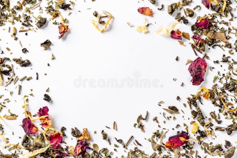 框架用与柑橘干花瓣和片断的绿茶  焊接的干茶 饮食和健康饮料 空位 免版税图库摄影