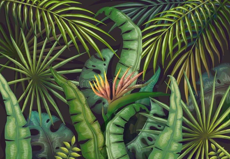 棕榈叶背景 热带夏天密林,异乎寻常的植物飞行物,绿色异乎寻常的森林海报 传染媒介葡萄酒密林 向量例证