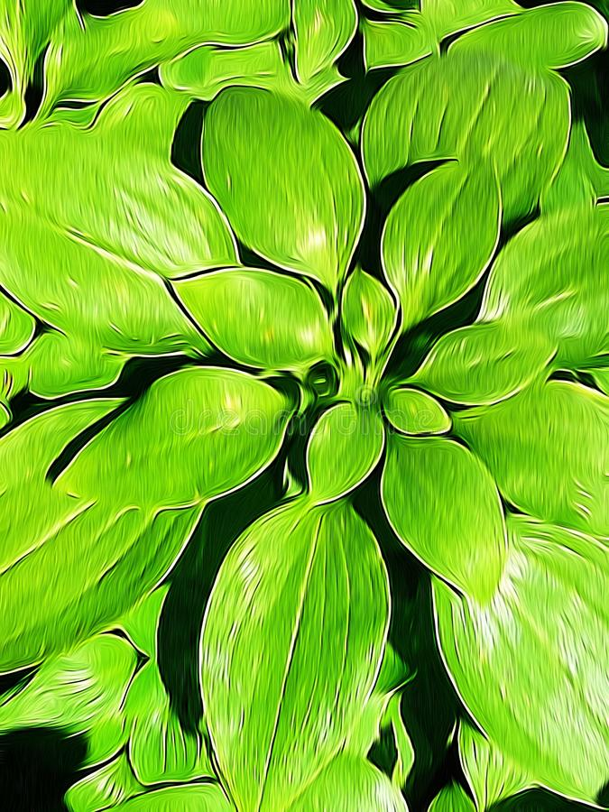 植物和叶子照片编辑与油漆刷应用 免版税图库摄影