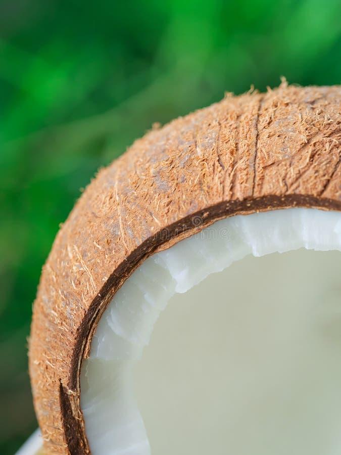 椰子一半宏指令在绿色背景,椰子纹理的 库存图片