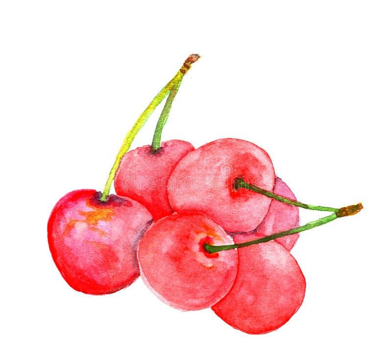 樱桃被绘的水彩 免版税库存图片