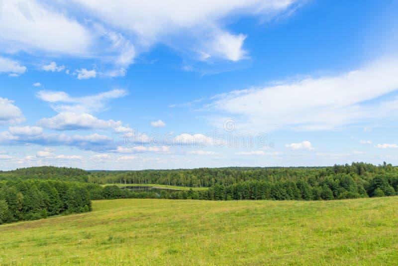 欧洲平原风景与小山的和低地、沼泽、草甸和森林 在天际的多云天空蔚蓝 免版税图库摄影