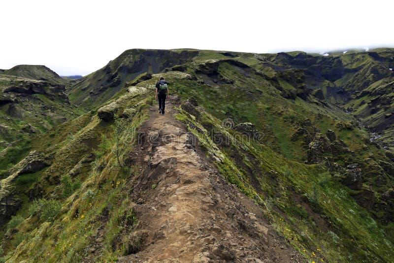 步行通过Godaland在一有雾的天,冰岛的人 库存图片