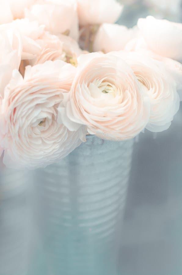 毛茛属在一个花瓶的花花束在淡色蓝色背景,关闭 图库摄影