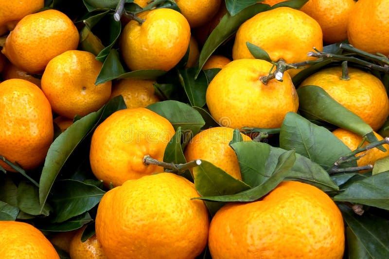水多的橙色蜜桔桔子,普通话,柑桔,与叶子的柑橘水果在市场上 图库摄影