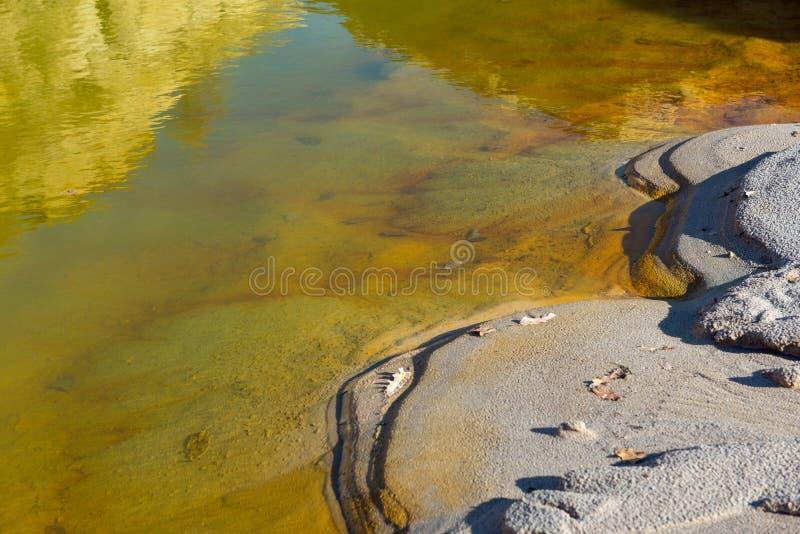 污染的黄色水 免版税库存照片
