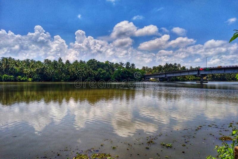 河路桥梁带领的椰子林木线云彩 库存照片