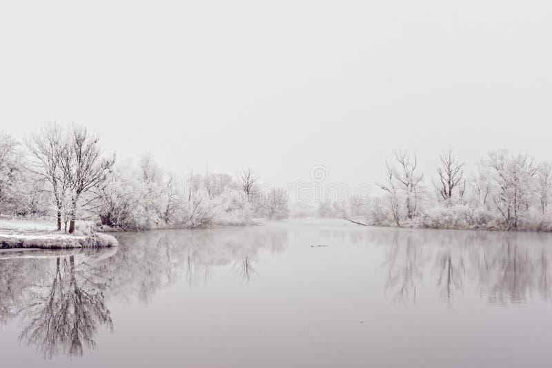 河风景岸边的区域冬天田园诗 免版税库存照片
