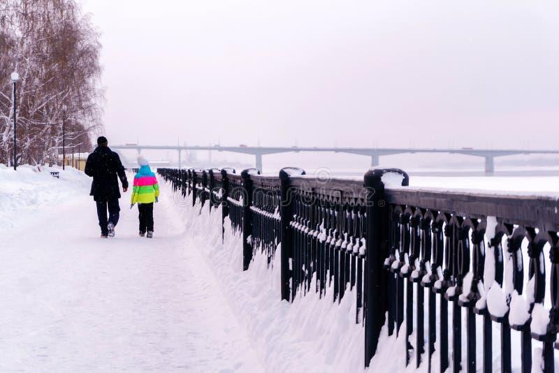 沿冬天散步的步行 免版税图库摄影