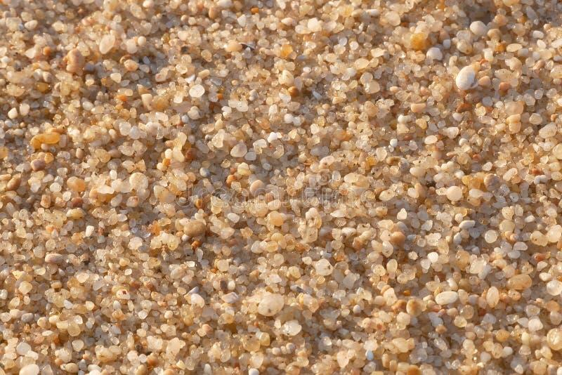 沙接近的宏指令在海滩的 免版税库存照片