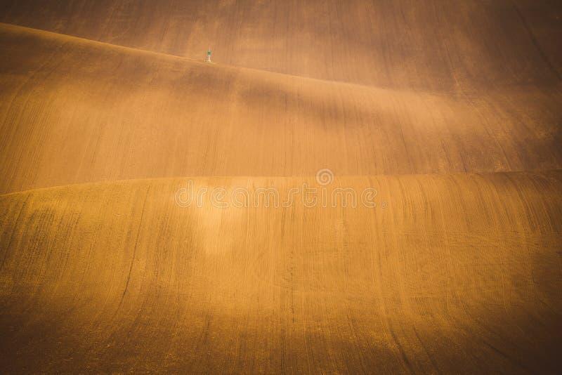 波浪秋天领域在Moravian托斯卡纳,捷克 库存图片