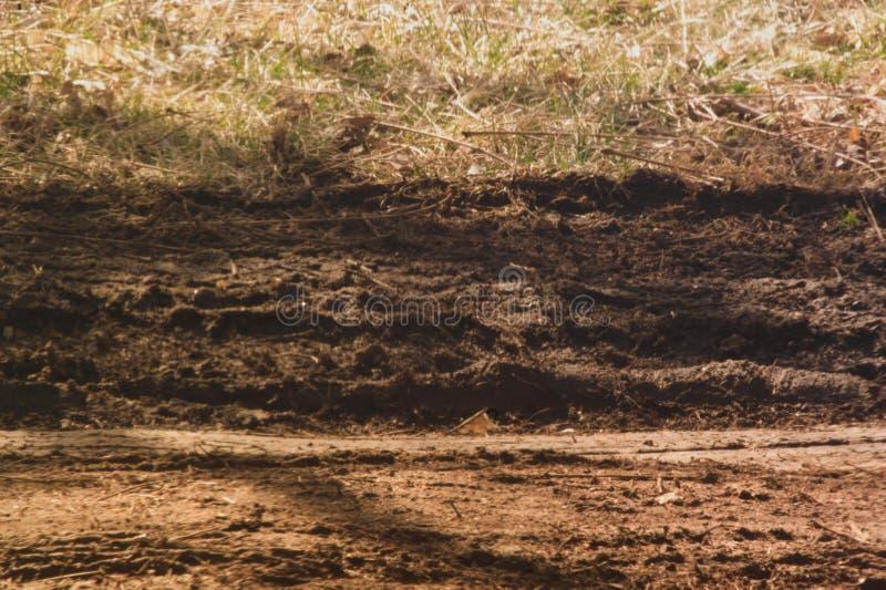 泥泞的车轮痕迹在干燥领域离开 免版税图库摄影