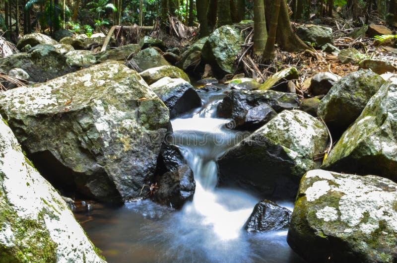 流动的小河和岩石 免版税库存图片