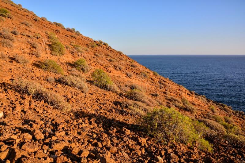 海洋Coast& 39;s视图 免版税库存图片