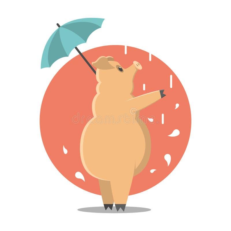 浓厚猪 猪在雨中 动画片猪 皇族释放例证