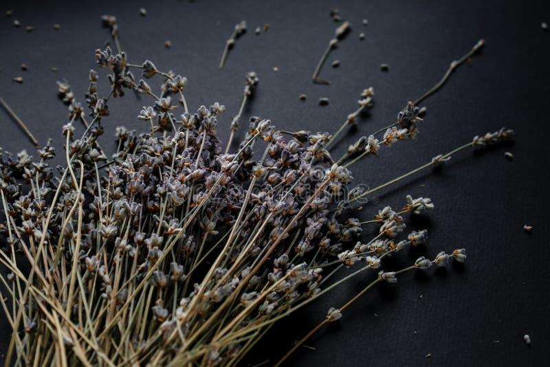 淡紫色花束在黑背景的 库存照片