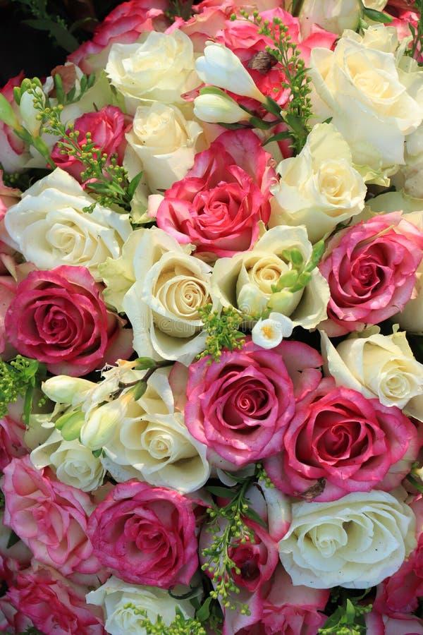 混杂的桃红色和白玫瑰 免版税库存照片