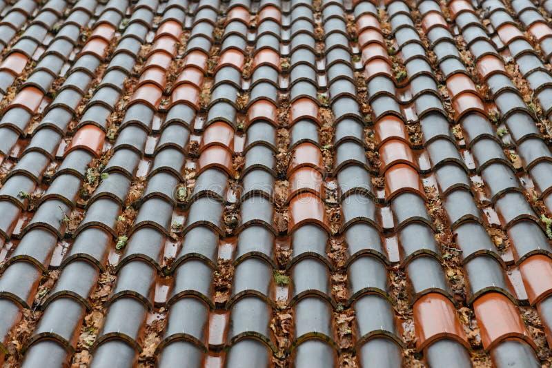 湿瓦片行在房子关闭的屋顶的,背景,纹理 免版税图库摄影