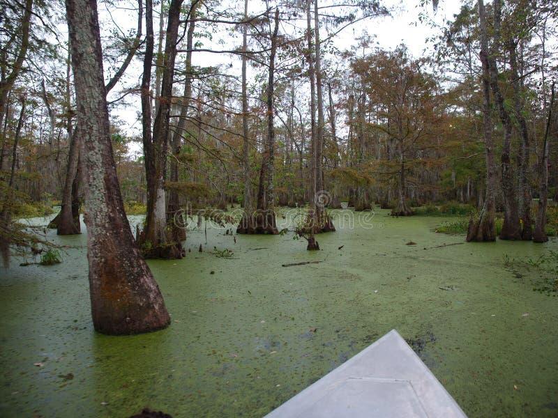 湖马丁,路易斯安那看法  免版税库存图片
