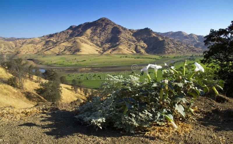 湖Kaweah在南加州 免版税库存照片