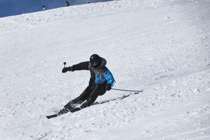滑雪下坡在Chopok,斯洛伐克的一个男性滑雪者 雕刻位置 左拐 Freeride Dificult位置 黑和灰色夹克 库存图片